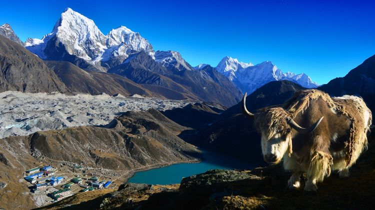 Gokyo Ri Everest Trek