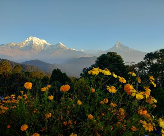 Amazing Nepal tour & travels