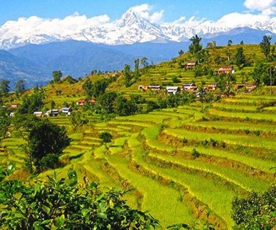 Royal trek in Annapurna
